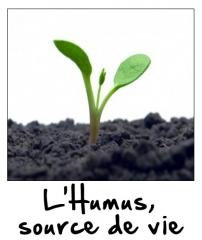 L'Humus source de vie